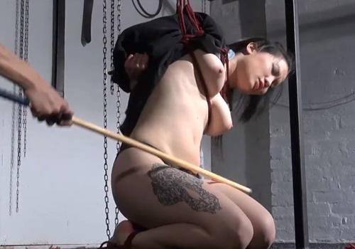 【SM動画】棒叩きに鞭打ち・・全ての痛みを快感に変換する真性ドMメス奴隷