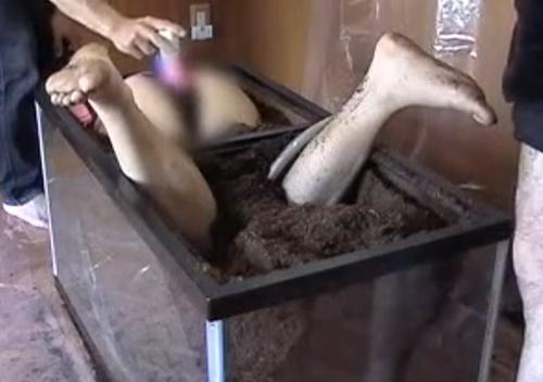 【拷問】土の中に生き埋めにしたオンナのマンコにバイブを突っ込むマジキチ動画