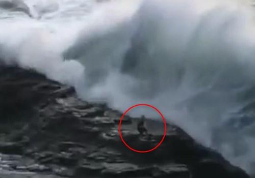 【恐怖】史上最大の大波(23.8m)に男が飲み込まれる動画が恐すぎる・・・