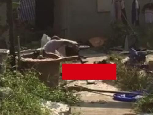 【閲覧注意】キチガイ息子、殺した父親を庭で解体してしまう・・・(動画あり)