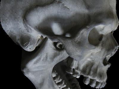 【超閲覧注意】何したらこうなるんだよ・・っていう人間の死体が発見される・・・(動画あり)