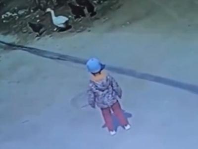 【衝撃映像】この3歳の男の子がこれからやばいことになります