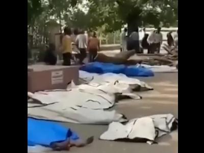 【閲覧注意】インド、やばい・・・・・・(動画あり)