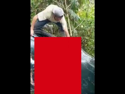【閲覧注意】崖から落下した乗用車のドライバー、顔面がちぎれてしまう(動画あり)