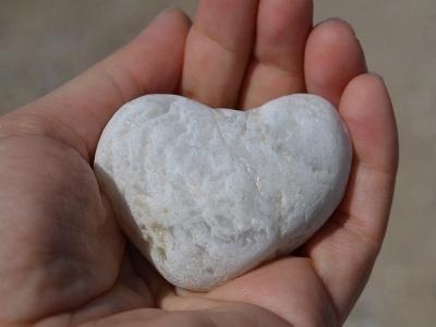 【超閲覧注意】医者「人間の心臓ってこんなだぞw」(動画あり)