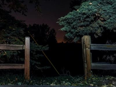 """【閲覧注意】深夜の森を散歩してたら """"恐ろしいモノ"""" を発見してしまったんだが・・・(動画あり)"""