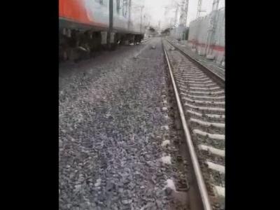 【閲覧注意】電車自殺、成功するとこうなるらしい・・・(動画あり)